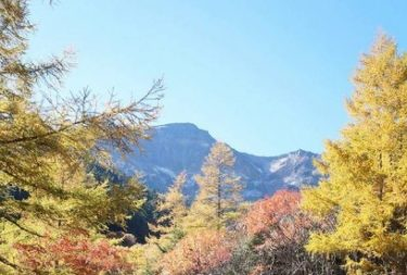【これぞ秘湯】日本最高所の野天風呂雲上の極楽の湯本沢温泉
