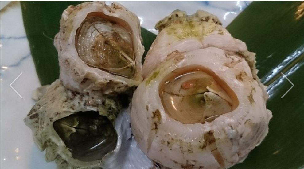 フジツボ料理 出典:食べログ